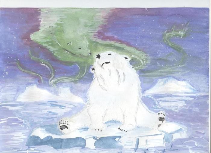 рисунок арктика карандашом