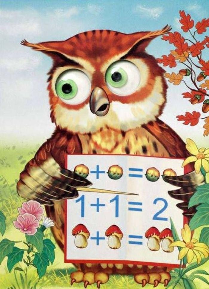 венчиковидный, картинка совы для урока займет более минуты