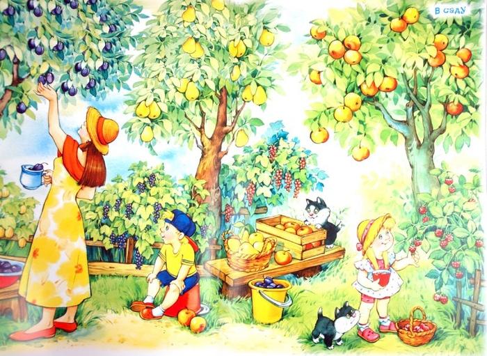 Картинки сбор урожая в саду