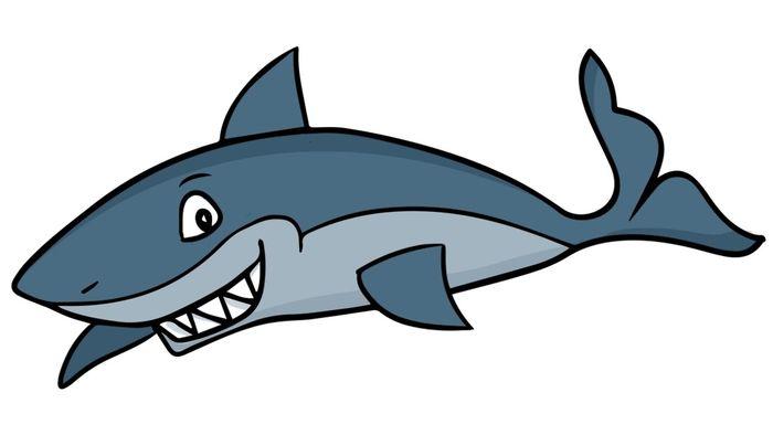 Акула картинки для детей в школу и в детский садик.