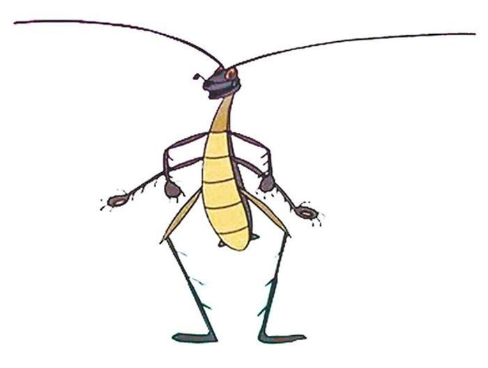 заготовить шаблон тараканище картинки выбрать