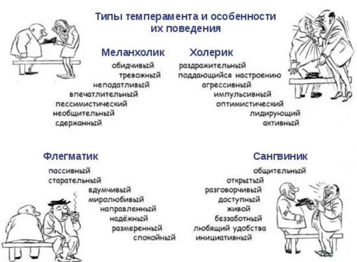 Типы характера с картинками