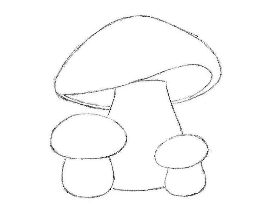 Белый гриб картинка для детей в детский садик и в школу