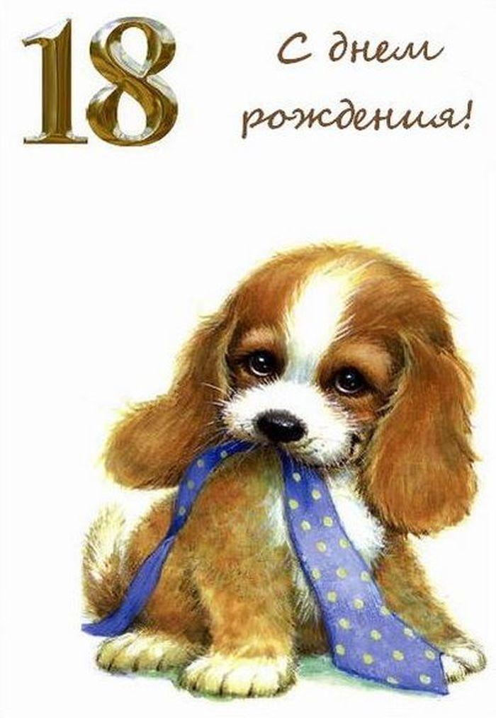 Открытке изображена, восемнадцатилетие открытка девушке