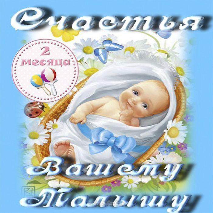 Картинка с 2 месяцами рождения девочки