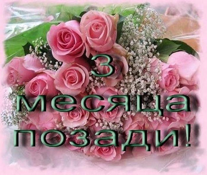 Поздравления с 3 месяцами картинки, открыток февраля