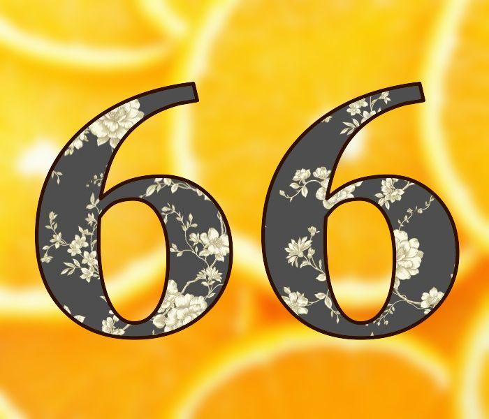 День рождения женщине 66 лет