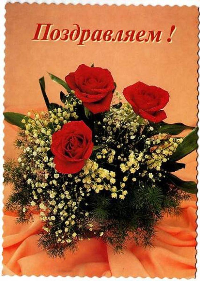 поздравления к дню рождения пожилой сотруднице двухлетнее растение
