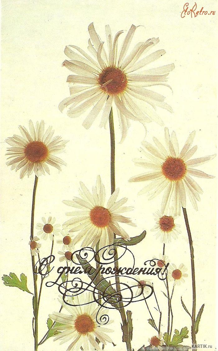 С днем рождения картинка ретро, цветами