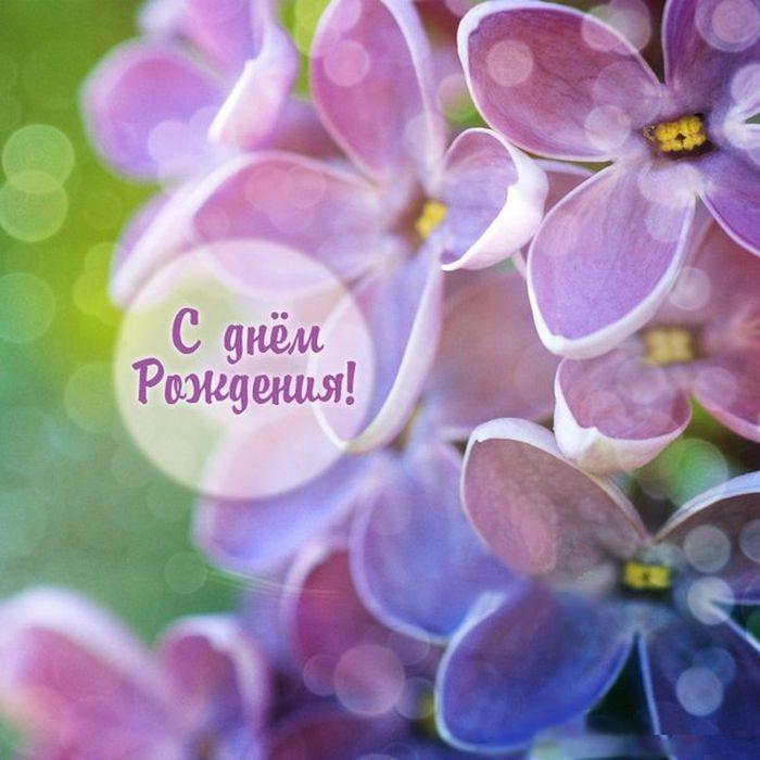 Днем, цветы с поздравлением с днем рождения картинки